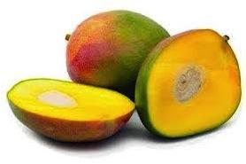 mangolip